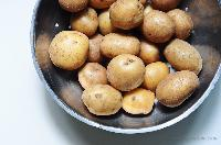 Fresh Good Quality Potato