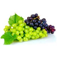 Fresh Green & Black Grapes