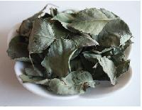 Dried Rose Leaves