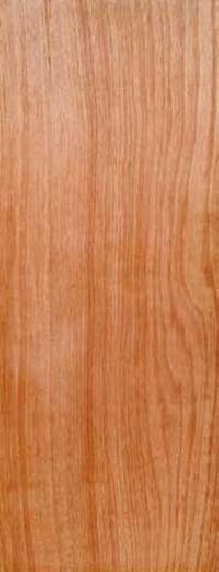 Wooden Flush Doors 01