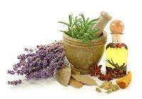 Crude Herbal Drugs