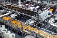 Fruit And  Vegetable Processing Plant