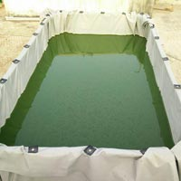 Spirulina Tank Installation Services