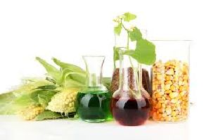 Biodiesel Oil