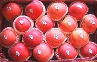 Yantai Fresh Fuji Apples