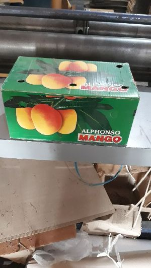 Corrugated Mango Packing Box