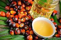 Palm oil & onion Manufacturer Malaysia