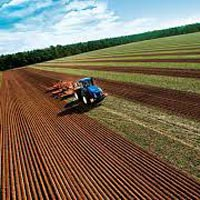 Agricultural Farming Services