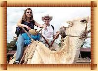 camel safari tour services