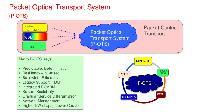 Optical Transport Network Management System
