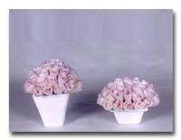 Dry Flower Df-03