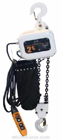 Micro Electric Hoist in Delhi - Manufacturers and Suppliers India