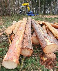 Wood Cutting Chain Saw