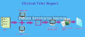 Clinical Trial Report Preparation Services