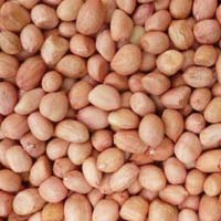 Java Groundnut Kernels