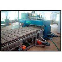 Pulp Moulding Machine