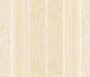 Nano Vitrified Floor Tiles