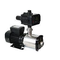 Automotive Pumps