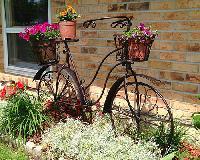 Iron Made Fancy Flower Pot