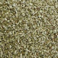 Ajwain Seed (bishop Seed)