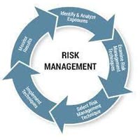 Enterprise Risk Management Services