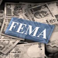 FEMA & RBI Related Services