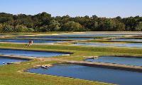 Ldpe Fish Pond