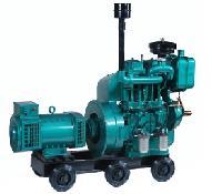 double cylinder diesel generator engine
