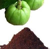 Garcinia Powder- Garcinia Cambogia
