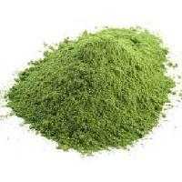 Stevia Powder- Stevia Rebaudiana Sweet Leaf