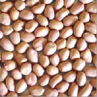 Groundnuts - 01