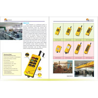 Industrial Wireless Remote Systems