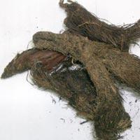 Jettamasi / Jatamansi (nardostachys Jatamansi)