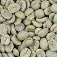 Organic Robusta Coffee Beans