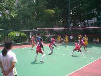Synthetic Volleyball Court Floorings