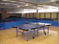 Wooden Table Tennis Court Floorings