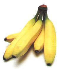 Banana Ripening Chamber