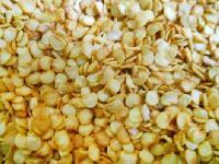 Chilli Hybrid Seeds