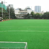 Artificial Hockey Ground Grass