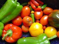 Natural Fresh Vegetable