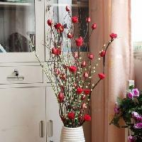 Home Decorative Dries Flower