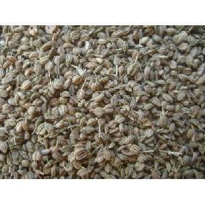 Ajwain Dry Extract