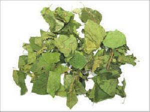 Gudmar Dry Extract