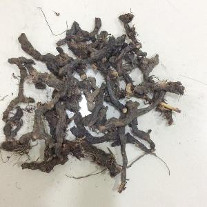 Nagarmotha Dry Extract