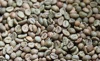 Organic Washed Robusta Coffee