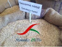 Ethiopian Sesame Seeds
