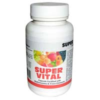 Full Day Energy Food Supplement