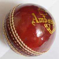 Cricket Ball Bdm Ambassador