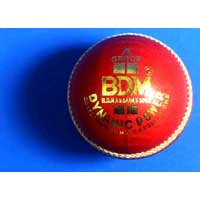 Cricket Ball Dynamic Power