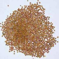 Mustard Seeds - 02